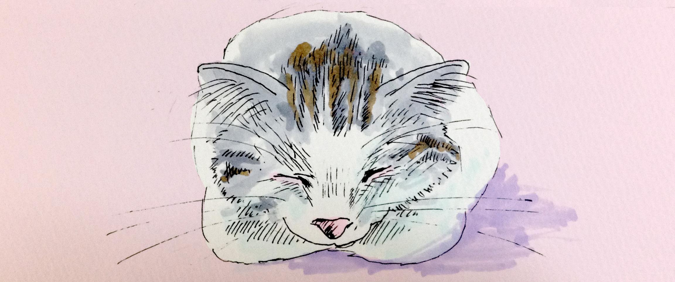 飼猫を通して知った命から人の生命倫理について考えるイメージをコピックで描いたイラスト