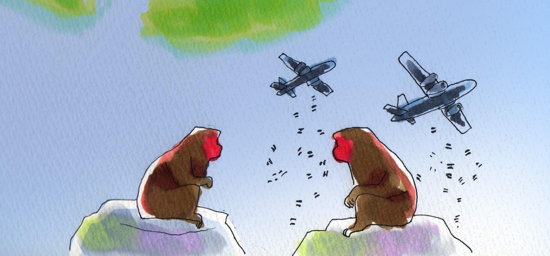 猿山で語らう2匹のサル