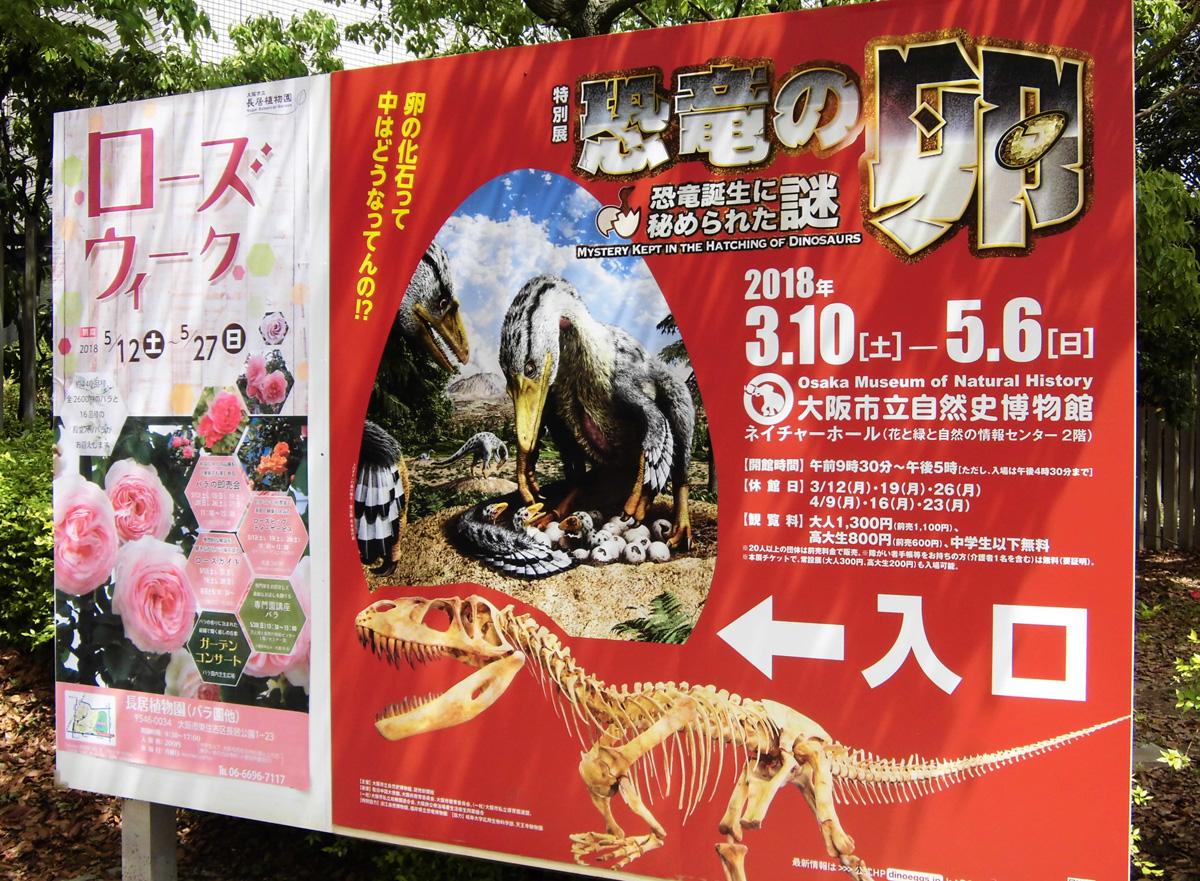 特別展「恐竜の卵 ~恐竜誕生に秘められた謎~」イメージ画像
